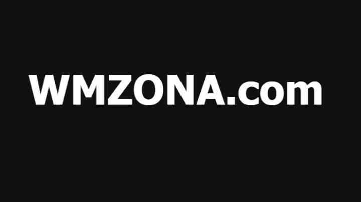 Логотип wmzona.com