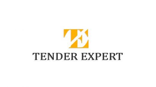Логотип Tender Expert