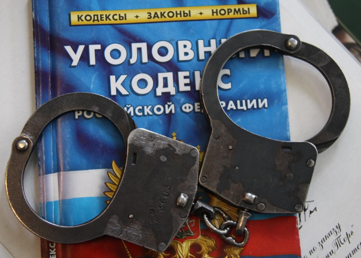 Ответственность за мошенничество в интернете по УК РФ