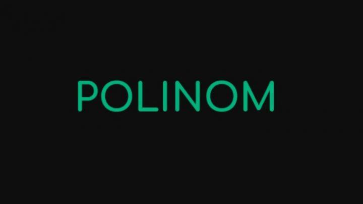 Логотип Polinom