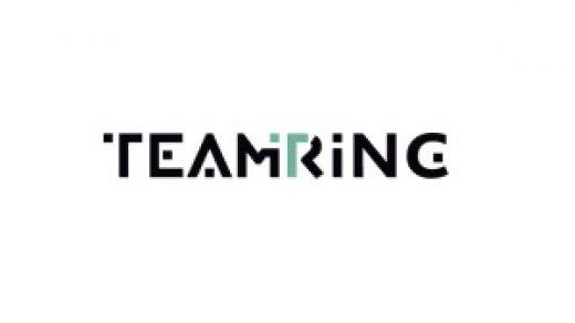 Логотип Teamring