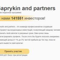 О проекте Saprykin And Partners
