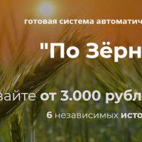 Курс Александра Писаревского «По зернышку»