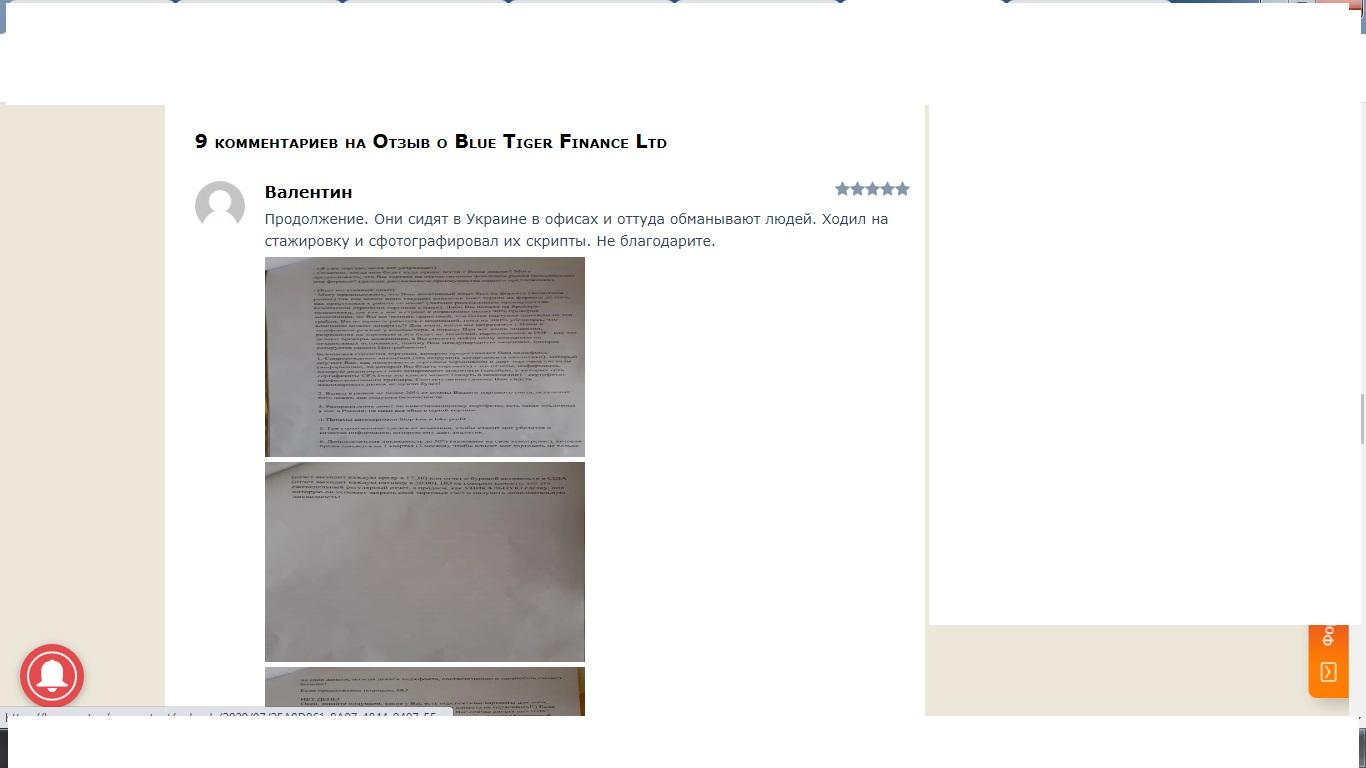 Отзыв о Blue Tiger Finance