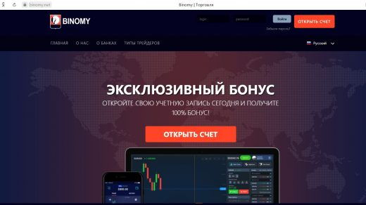 Главная страница Binomy