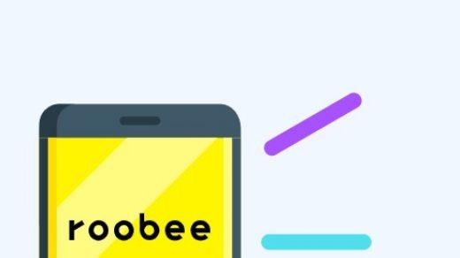 Главная страница проекта Roobee