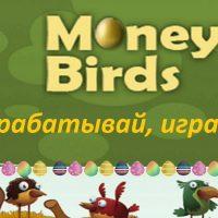 Money Birds - отзывы об экономической игре